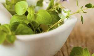 Какие травы пить при климаксе у женщин?