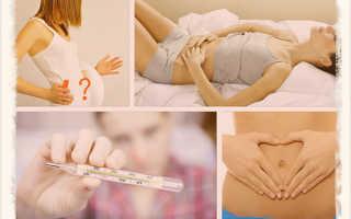 Беременность: первые признаки до задержки[]