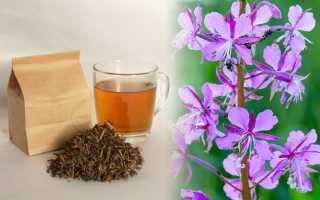 Можно ли пить иван-чай при беременности?