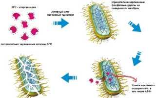 Свечи Хлоргексидин: инструкция по применению