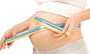 Размер живота по неделям беременности