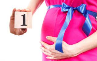 Первые месяцы беременности: что можно и что нельзя делать?