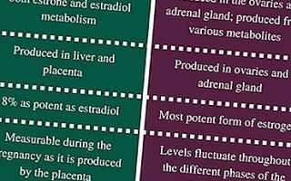 Отличия эстрогена и эстрадиола